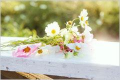 白い手すりに置かれた小さな花束の写真