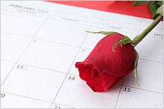赤いバラが一輪置かれたスケジュール帳の写真