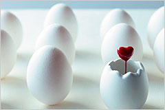 たくさんの卵の中のひとつからハートのピックが出ている写真
